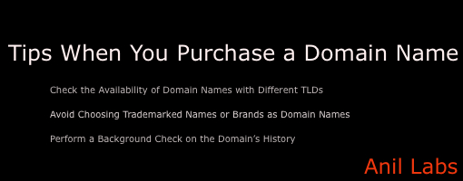 Tips When You Purchase a Domain Name - Anil Labs